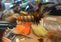 Fly for Atlantic salmon - Picture shared by Terry Landry – Fly dreamers