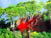the Moune red using Pseudo hackle