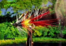 Fly for Atlantic salmon - Picture by Lawrence Finney – Fly dreamers
