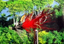Lawrence Finney 's Fly for Atlantic salmon - Picture – Fly dreamers