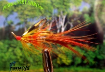 Lawrence Finney 's Fly for Atlantic salmon - Pic – Fly dreamers