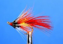 Lawrence Finney 's Flyfor Atlantic salmon -– Fly dreamers