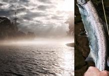 Fly-fishing Photoof Smolt shared by Tomas Kolesinskas – Fly dreamers