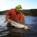 Serrano´s King Salmon caught in Torres del paine National Park
