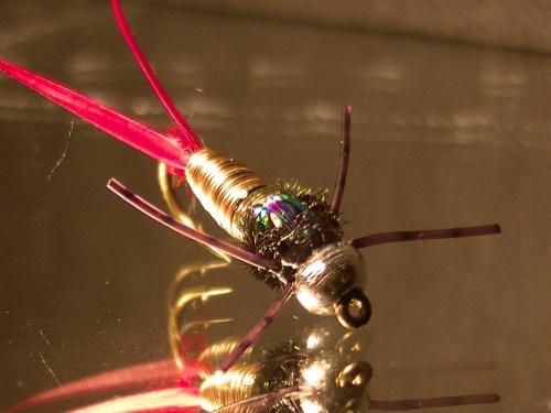 INMORTAL. Como andan todo locuras del atado y del flyLa moscas de hoy Copper JohnUna mosca relativamente joven, bueno mas o menos creada a mediados de los años 90 por el atador estadounidense John BarrLa idea del Master, estaba buscando una mosca c...
