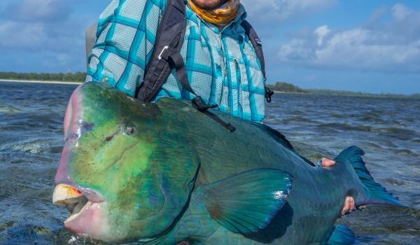 Fishing Report: Farquhar Atoll, Seychelles