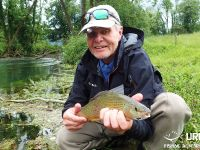 Dry fly madness at the river Bistra!