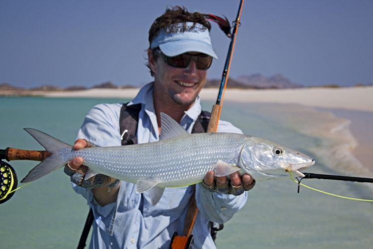 One of the few recorded Arab Bonefish