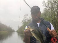 Flyfishing for largemouth bass in the freshwater canals of the Everglades
