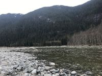 What a scenic river the Squamish is!