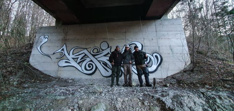 A street art dedicated to the Ghosts of the river - European Hucho salmon