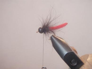 Fly tying - Marian Killer Nymph - Step 7