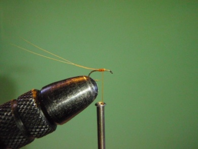 Fly tying - ephemere / may flie - Step 7