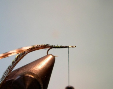 Fly tying -  Griffith's Gnat  - Step 2