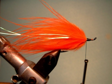 Fly tying - Popsicle - Step 3