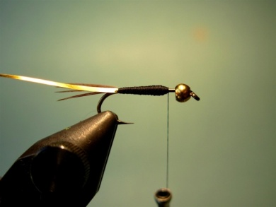 Fly tying - Lightning Bug (variation) - Step 3