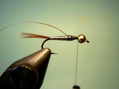 Fly tying - Lightning Bug (variation) - Step 4