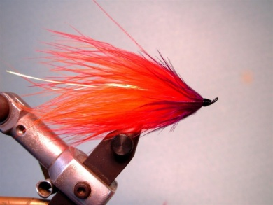 Fly tying - Popsicle - Step 7