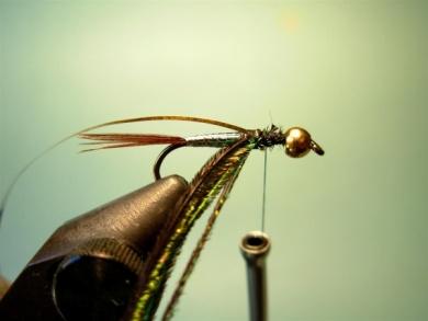 Fly tying - Lightning Bug (variation) - Step 5