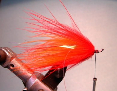 Fly tying - Popsicle - Step 5