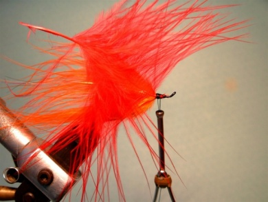 Fly tying - Popsicle - Step 4