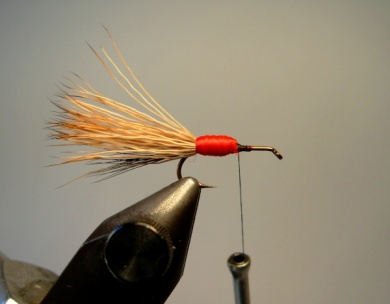 Fly tying - Red Humpy - Step 4