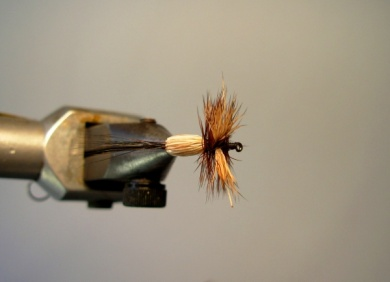 Fly tying - Red Humpy - Step 10