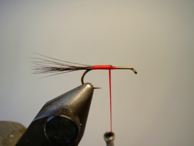 Fly tying - Red Humpy - Step 1