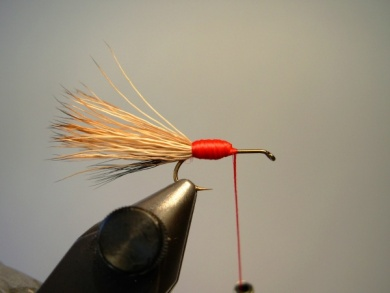 Fly tying - Red Humpy - Step 3