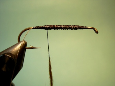 Fly tying - Matuka - Step 2