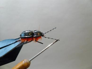 Fly tying - Gaja's Winged Fishing Beetle - Step 31