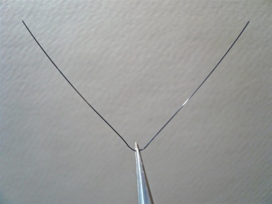 Fly tying - Gaja's Winged Fishing Beetle - Step 18