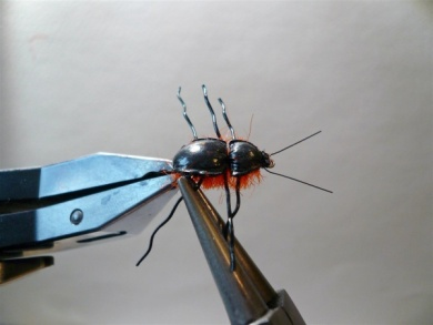 Fly tying - Gaja's Winged Fishing Beetle - Step 25