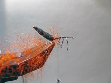 Fly tying - Gaja's Winged Fishing Beetle - Step 13