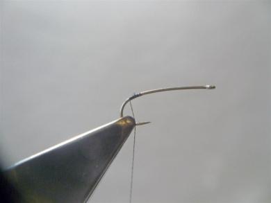 Fly tying - Gaja's Winged Fishing Beetle - Step 1