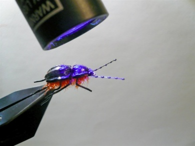 Fly tying - Gaja's Winged Fishing Beetle - Step 32
