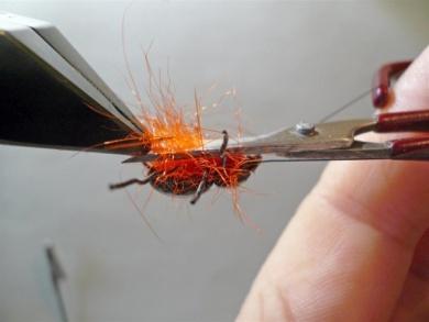 Fly tying - Gaja's Winged Fishing Beetle - Step 23