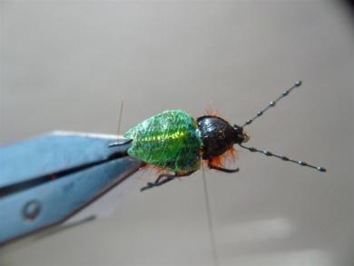 Fly tying - Gaja's Winged Fishing Beetle - Step 43
