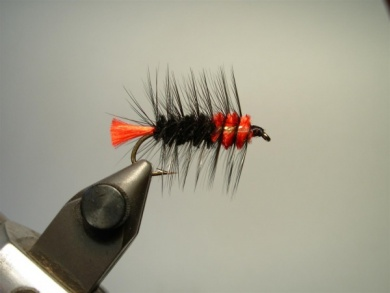 Fly tying - Woolly Worm - Step 10