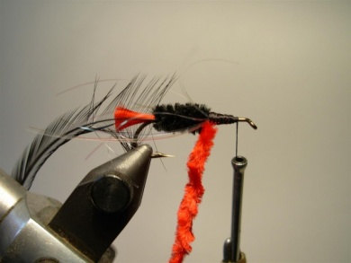 Fly tying - Woolly Worm - Step 7