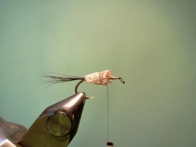 Fly tying - Irresistible Wulff - Step 4