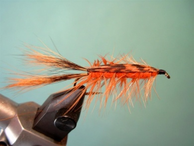 Fly tying - Brown´s Crayfish - Step 8