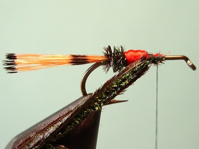 Fly tying - Royal Trude - Step 6