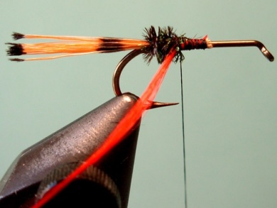 Fly tying - Royal Trude - Step 4