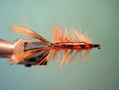 Fly tying - Brown´s Crayfish - Step 10