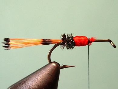 Fly tying - Royal Trude - Step 5