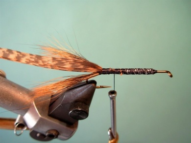 Fly tying - Brown´s Crayfish - Step 4