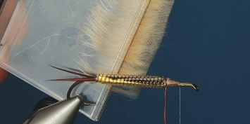 Fly tying - George´s Grant Stone Fly - Step 8