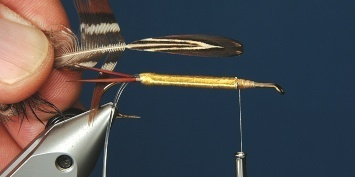 Fly tying - George´s Grant Stone Fly - Step 5