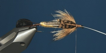 Fly tying - George´s Grant Stone Fly - Step 12